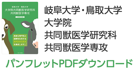 パンフレットPDFダウンロード